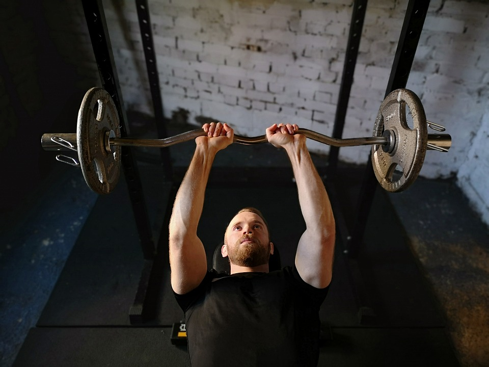 What is the Best Strength Training to Lose Weight?